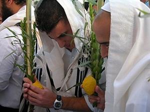 Święto Sukkot czyli Święto Namiotów jutro w Szydłowcu