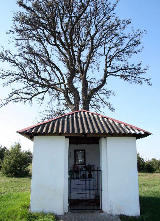 Kapliczka Marianka