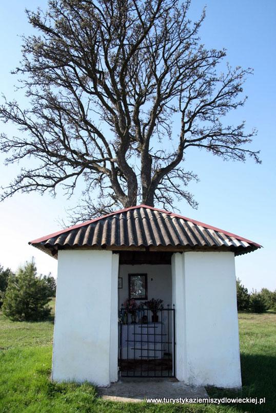 Niezbyt efektowna murowana domkowa kapliczka z wejściem zamykanym żelazną kratą, wznosi się po zachodniej stronie drogi ze Zdziechowa do Świniowa.