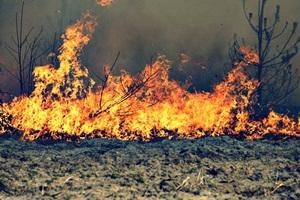 Szydłowiec w ogniu!