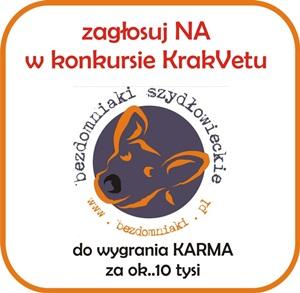 Wygrajmy karmę dla bezdomniaków z Szydłowca!
