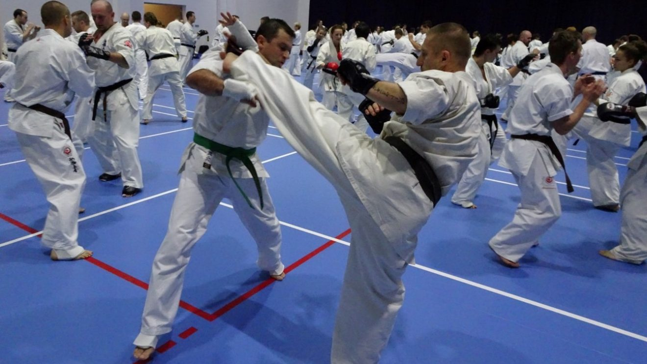 Karatecy z Szydłowca trenowali z mistrzynią świata