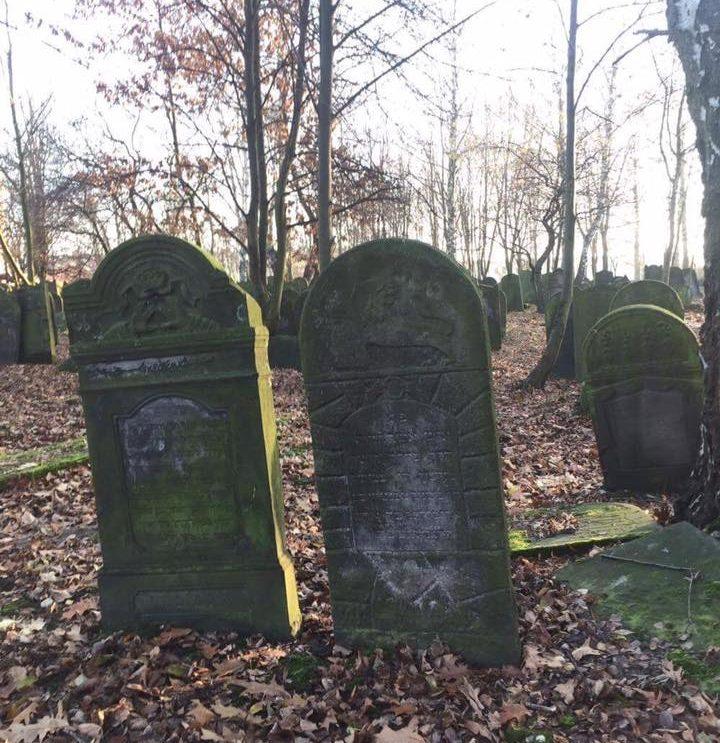 Szydłowiecka młodzież posprzątała cmentarz żydowski