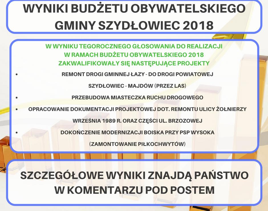 Znamy wyniki tegorocznego Budżetu Obywatelskiego!