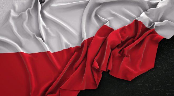 Biało – Czerwoni dla Niepodległej!
