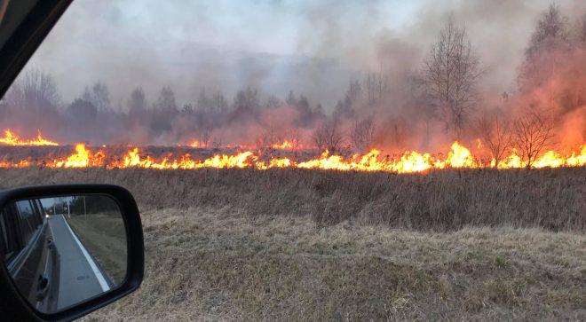 Przerażające liczy dotyczące pożarów w powiecie szydłowieckim od początku roku