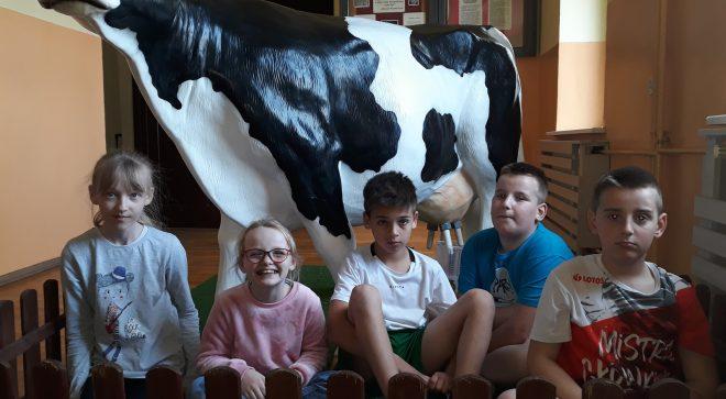 Mleko w szkole w Sadku