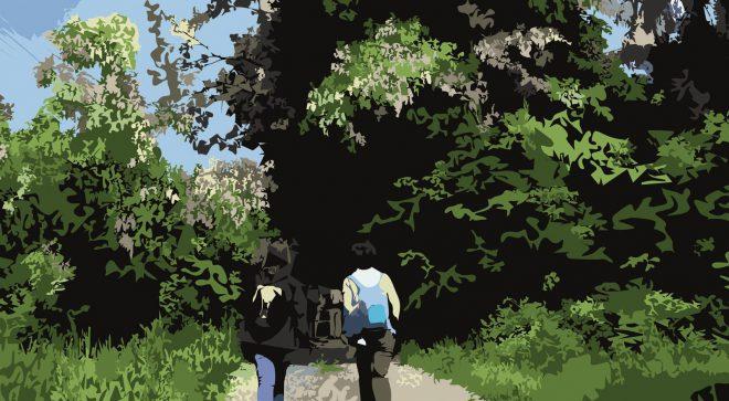 Zapraszamy na V Szydłowiecki Rajd Turystyczny Szlakami Artura Łyczka