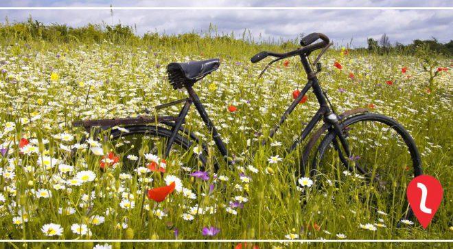 Powitanie wiosny na rowerach