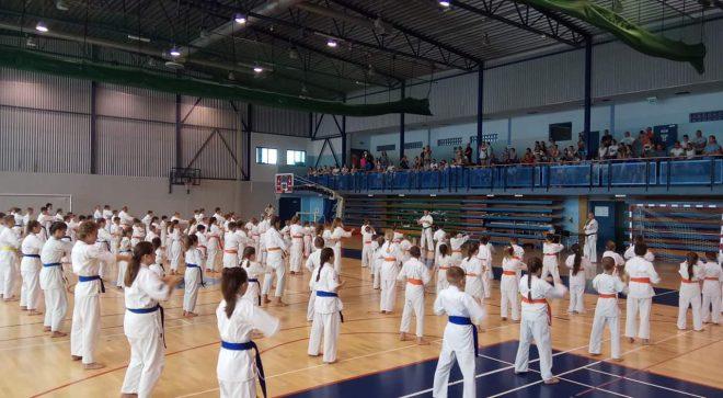 Egzamin Akademii Karate Szydłowiec