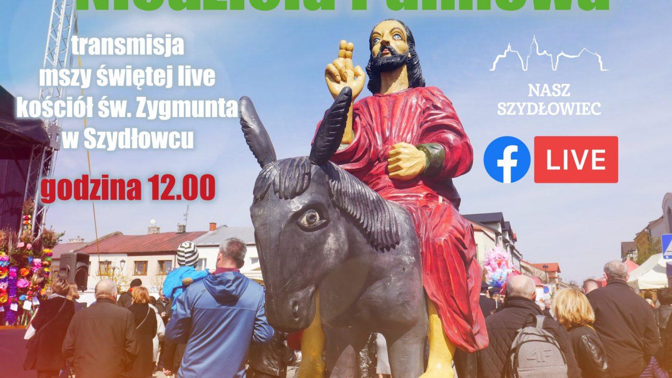 Transmisja mszy świętej Niedzieli Palmowej z kościoła św. Zygmunta w Szydłowcu. 5.04.2020.