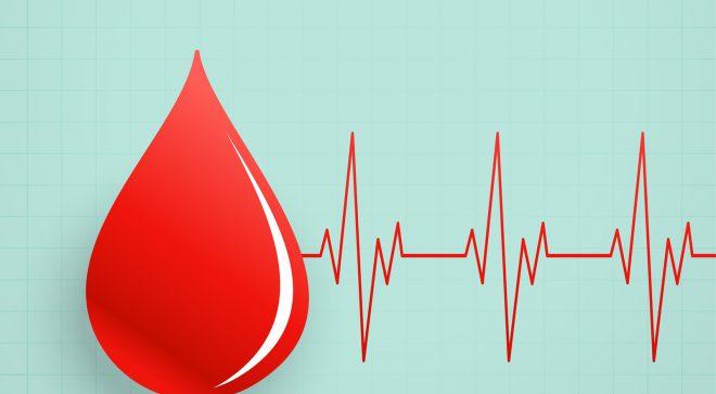 W najbliższą niedzielę zbiórka krwi w Szydłowcu