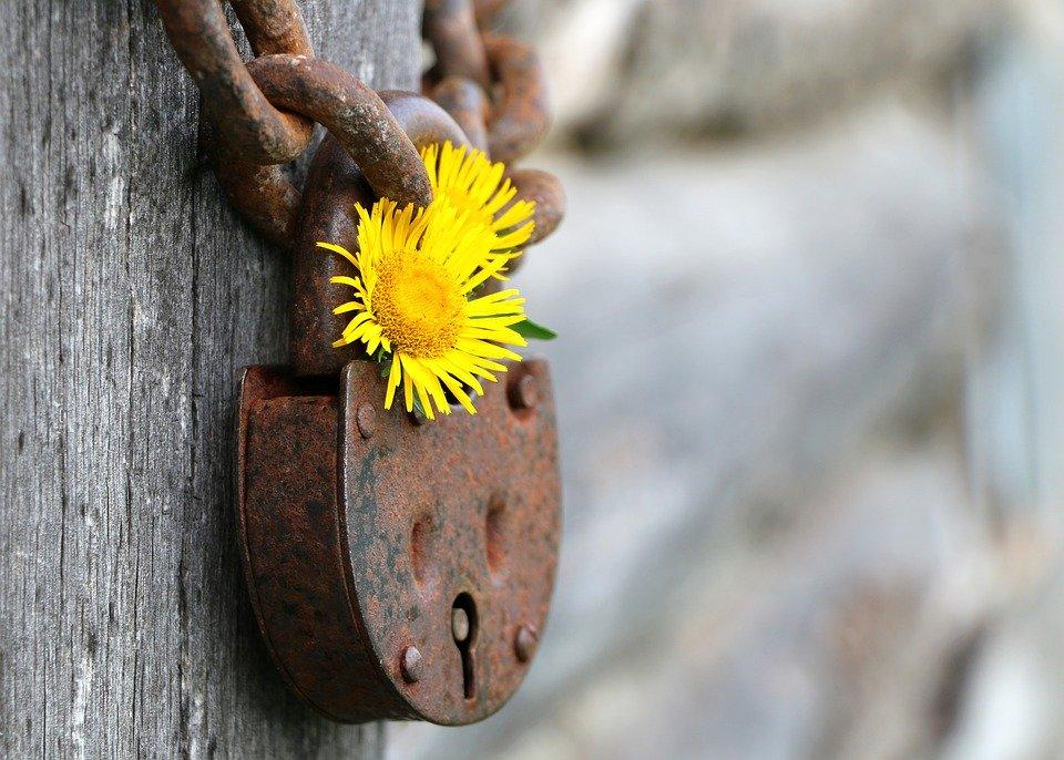 Co tworzy wiarygodność firmy ochroniarskiej? ORŁY Ochrony – najlepiej oceniane przedsiębiorstwa w okolicy
