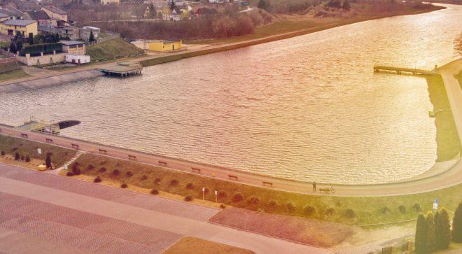 Sinice w zalewie w Jastrzębiu