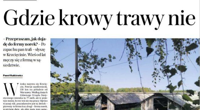 Temat futrzarskich ferm z naszego terenu przypomniała Gazeta Wyborcza