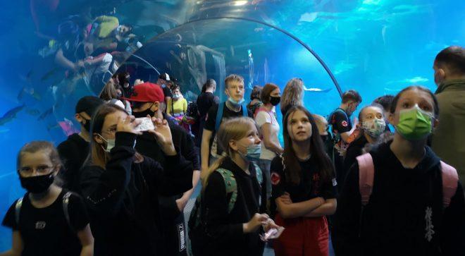 Szydłowieccy karatecy zwiedzali oceanarium