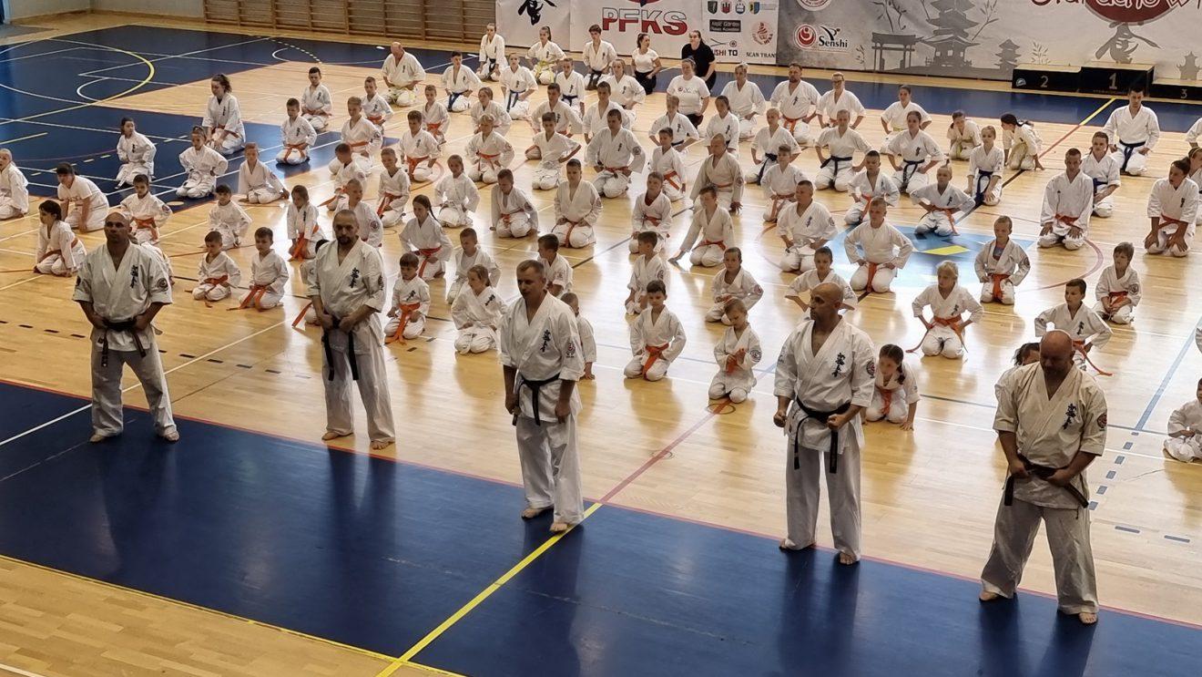 Egzamin karate na stopnie kyu