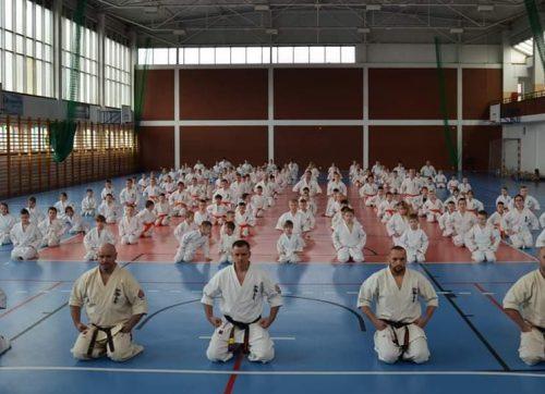 Egzamin karate w Szydłowcu